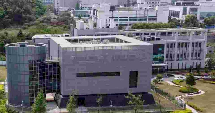 Wuhan lab head calls coronavirus leak claims 'pure fabrication'
